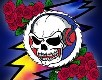 GDRADIO.NET - Streaming Grateful Dead and More!
